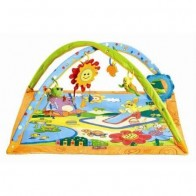 Playgyms/Activity Centres