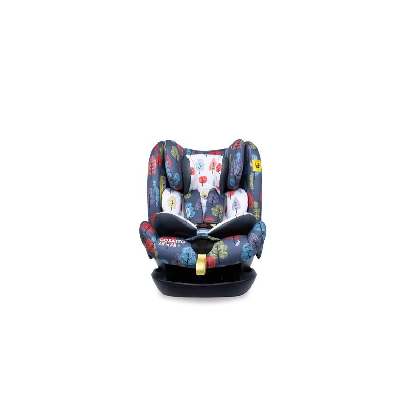 Cosatto All in All + Group 0+123 Car Seat-Harewood