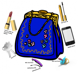 Handbag-Essentials-300x284