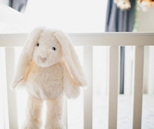 Prince Lionheart Nursery