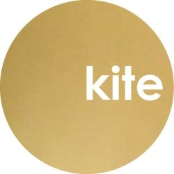 Kite Gold Wave Bouncer (New)